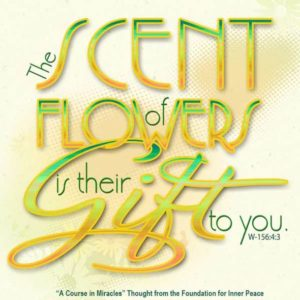 """graphic (ACIM Weekly Thought): """"The scent of flowers is their gift to you."""" W-pI.156.4:3"""