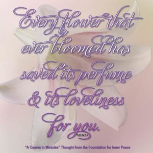 """graphic (ACIM Weekly Thought): """"And every flower that ever bloomed has saved its perfume and its loveliness for you."""" T-25.IV.5:4"""
