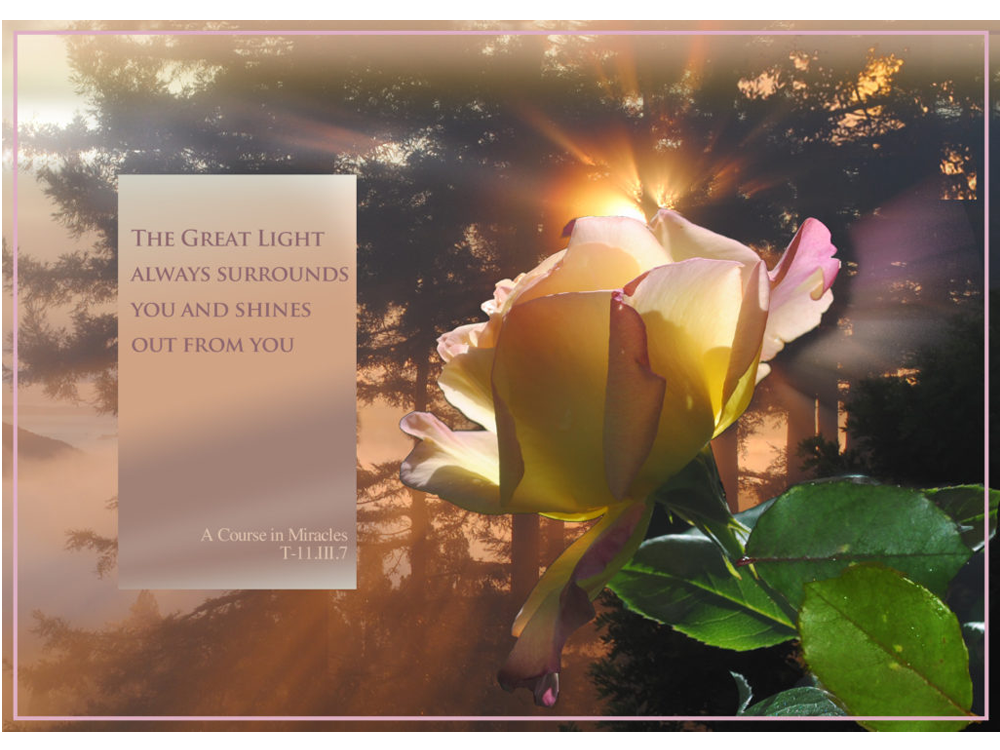 "Meditation graphic with quote: ""The Great Light always surrounds you and shines out from you."" – T-11.III.4:7; backlit yellow/magenta rose with misty forest background"