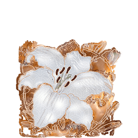 graphic: ACIM Web Edition - white lily with 'copper garden' background